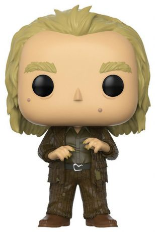 Figurine Funko Pop Harry Potter #48 Peter Pettigrow